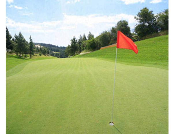 El_chaparral_golf2