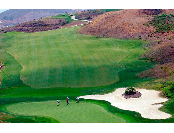 calanova_golf4